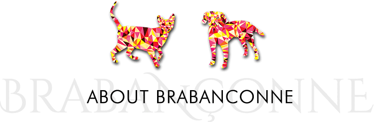 About Brabanconne
